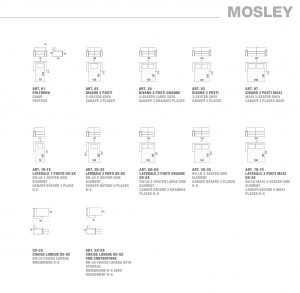 Mosley Felis