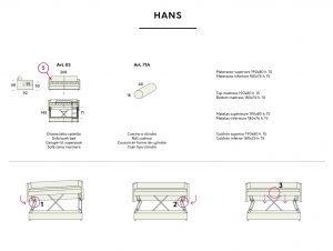 Hans Felis